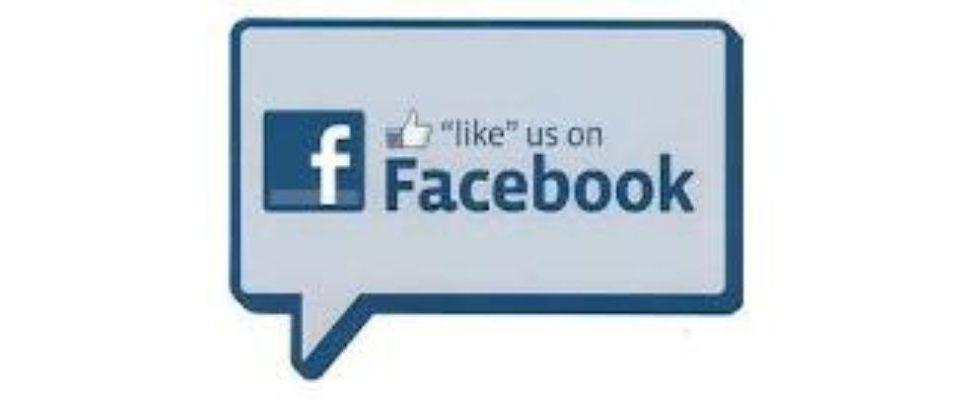 Facebook: Wer hatte die meisten Fake-Fans?