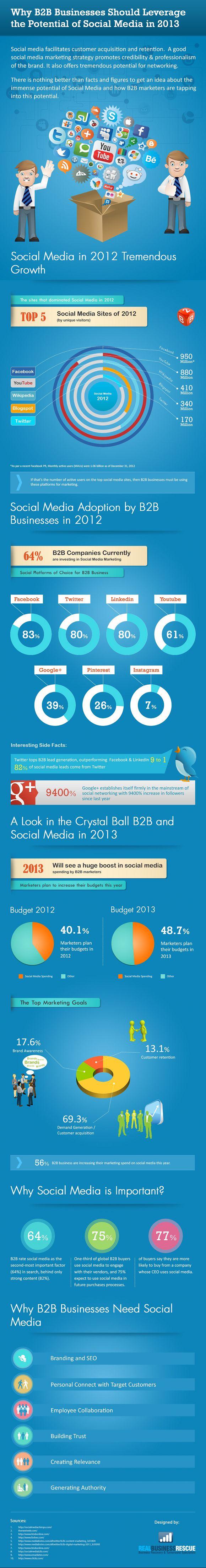 b2b-social-media-2013