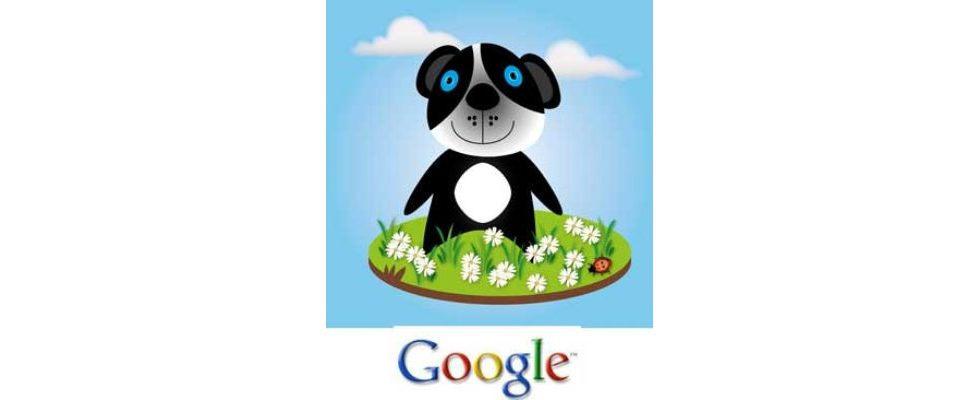 Neues Panda-Update: Wieso Google Gastautorenbeiträge in Blogs abstraft