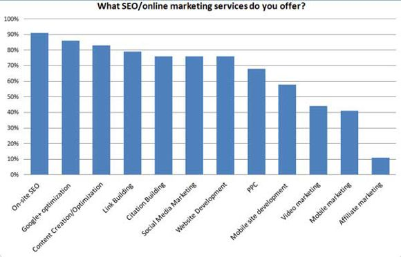 Local-SEO-Survey-What-SEO-online-services-do-you-offer