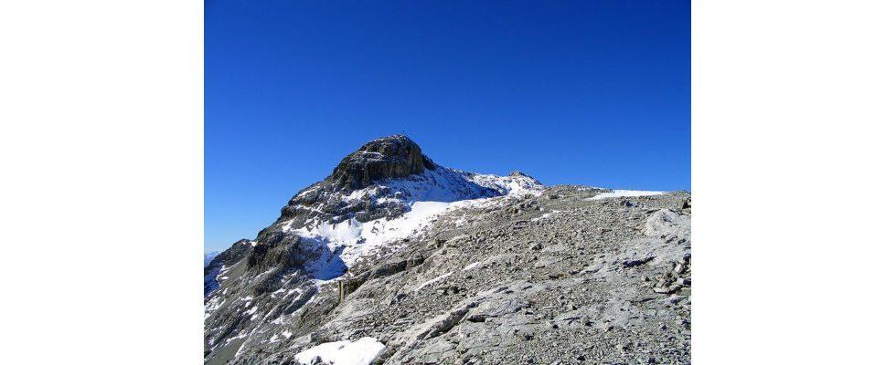 SEO-Studie: Und ewig ruft der Gipfel