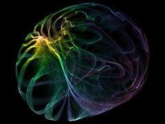 artsy-experiment-fractal-410786-o