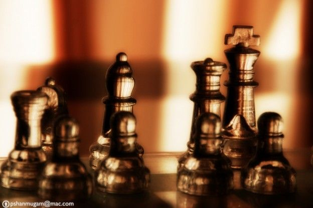 chess-game-orton-2358784-h