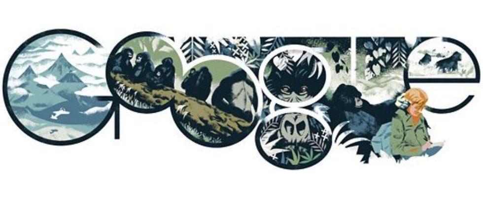 Google Doodle von heute: Dian Fossey – die Verhaltensforscherin musste für den Tierschutz mit ihrem Leben bezahlen