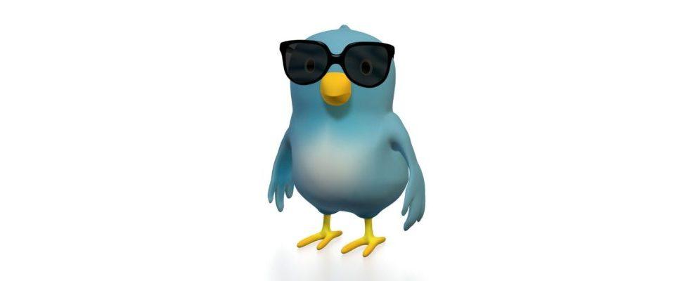 Achtung: Neues Profil-Design bei Twitter wird heute automatisch aktiviert