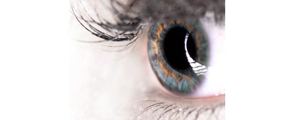 Infografik: Die Macht der visuellen Kommunikation