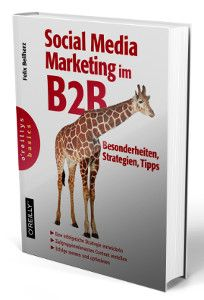 Felix Beilharz B2B Social Media Marketing Buch