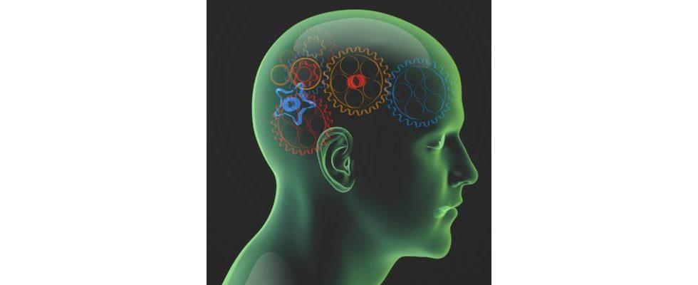 Neuromarketing ist in aller Munde & auch im Onlinebereich sinnvoll