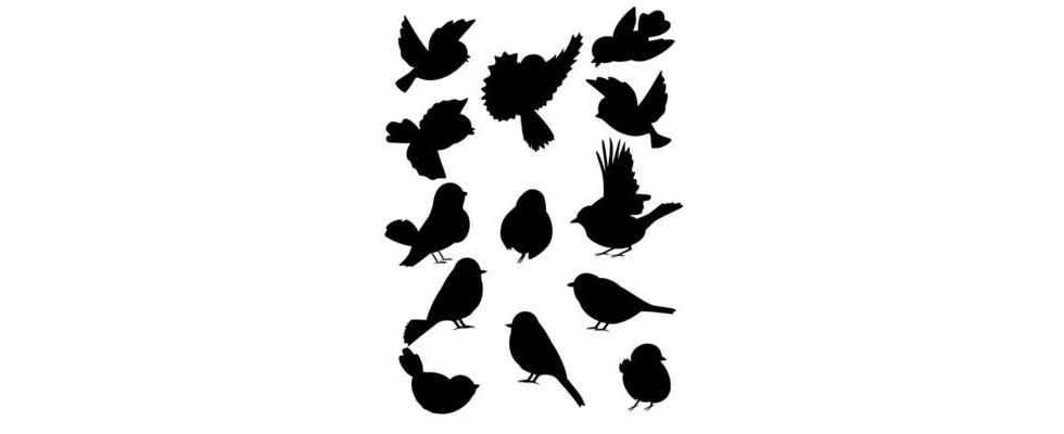 Bewegung auf Twitter – soziales Netzwerk jetzt GIF-tauglich