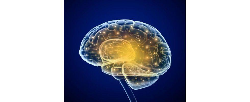 Synapsen als Zielgruppe: Ideen zur Erstellung von viralem Content