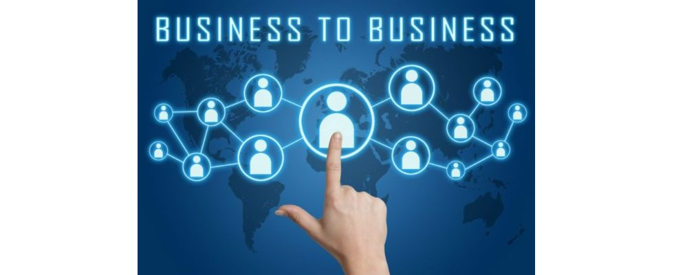 LinkedIn: Der Platzhirsch unter den B2B-Netzwerken