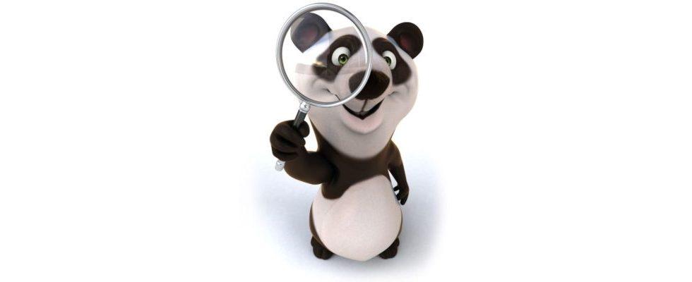 Panda 4.1: Neues Update von Googles Suchalgorithmus sorgt für Hoffnung und Angst