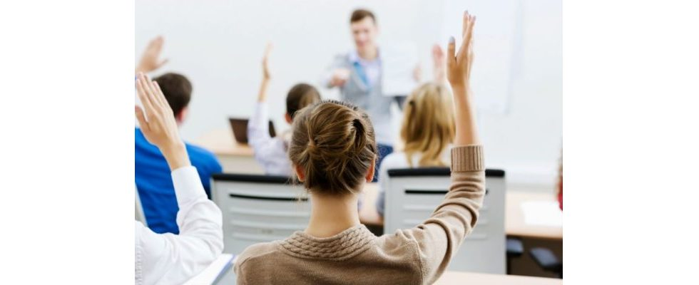 Lehrende App: Google Primer agiert als Online-Marketing-Ratgeber für Start-ups
