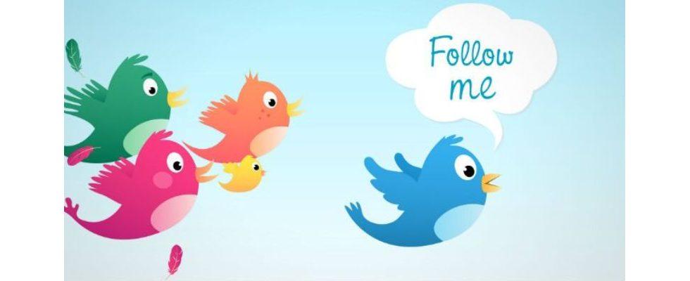 Twitter-Challenge: Wie generiert man in 16 Tagen am meisten Follower?