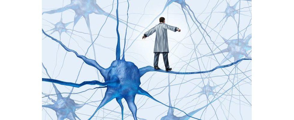 Social Ads mithilfe der Neuropsychologie optimieren