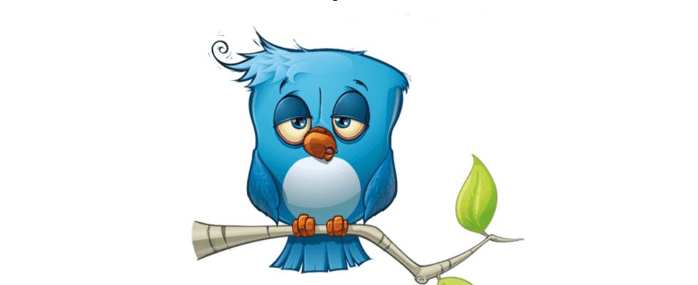 Viel Gezwitscher um nichts? Kritik an Twitter hält sich hartnäckig