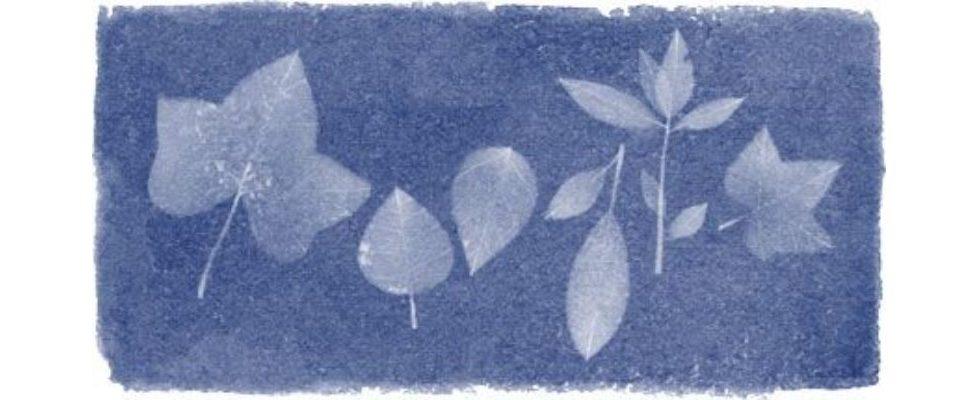 Google Doodle von heute: Anna Atkins