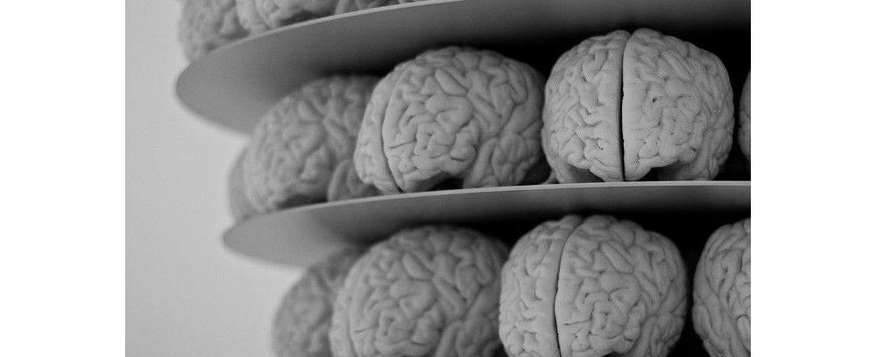 Mit Blick auf die Neurowissenschaften: Wie unser Gehirn Werbung verarbeitet