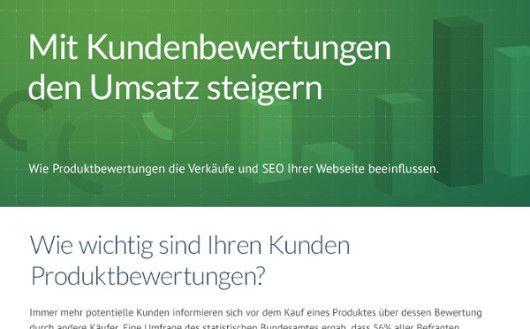 Infografik - Mit Kundenbewertungen den Umsatz steigern by eKomi_Preview