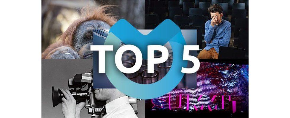 Seitenoptimierung, Videoinfluencer und gefühlvolle Werbung: Die Top-Themen der vergangenen Woche