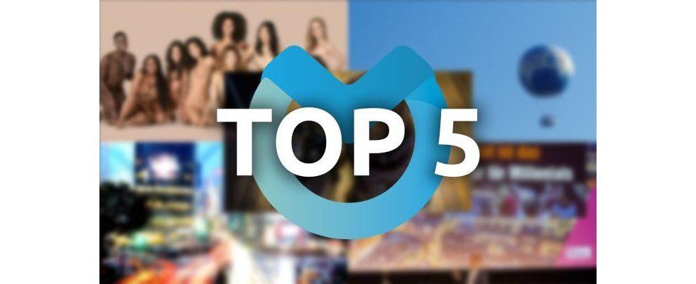 Bürohunde, Programmatic Advertising und Spitzen-Publisher: Die Top-Themen der vergangenen Woche
