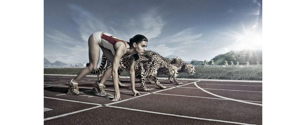 Need for Speed: Warum Schnelligkeit so elementar für erfolgreiche digitale Werbung ist