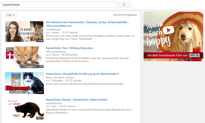 GDN Banner in den YouTube Suchergebnissen, Quelle: YouTube Screenshot