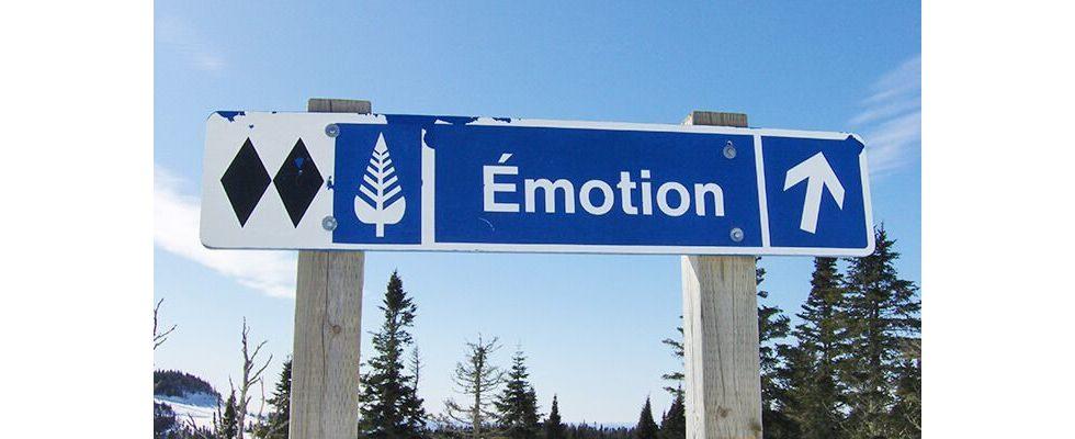 Moderner Karrierebaustein: Emotionale Intelligenz verstehen und lernen