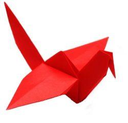 Greybirds GmbH