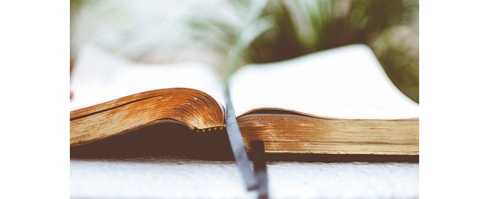 Bookmarks auf Instagram: Wie können Marketer profitieren?
