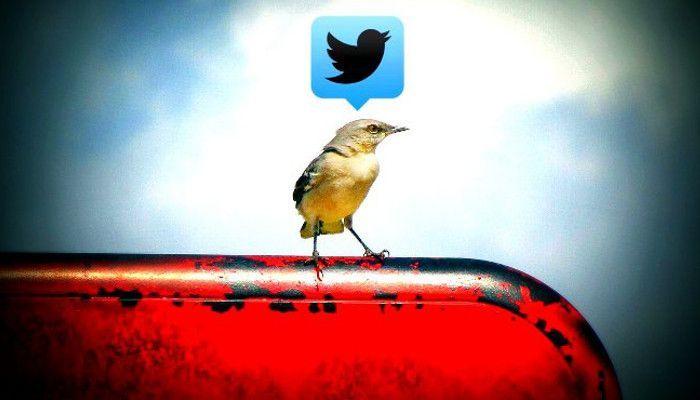 Dollar monatlich: Twitter bastelt an einem Abo-Modell für Power-User