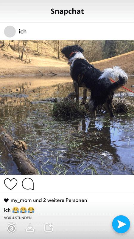 Snapchat macht jetzt einen auf Instagram
