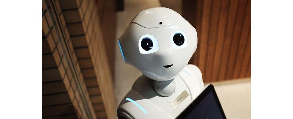 Eigener Chatbot: Von der Einrichtung bis zur Anwendung