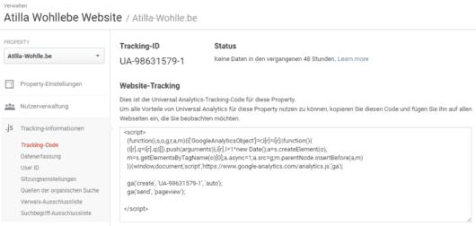 Google Analytics - Einrichtung - Tracking Code