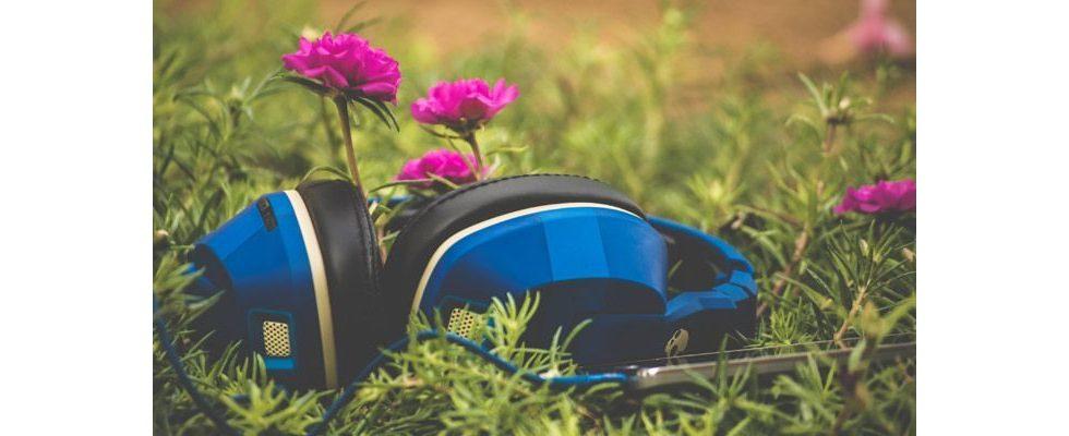 Musik frei verfügbar: Facebook und Universal Music treffen weltweit einmaliges Abkommen