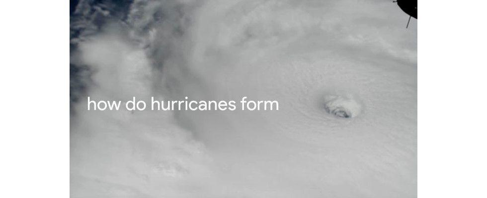 Das Jahr 2017 in der Googlesuche: Hurricane Irma, iPhone X und Belästigungsvorwürfe