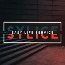 Sylice Media
