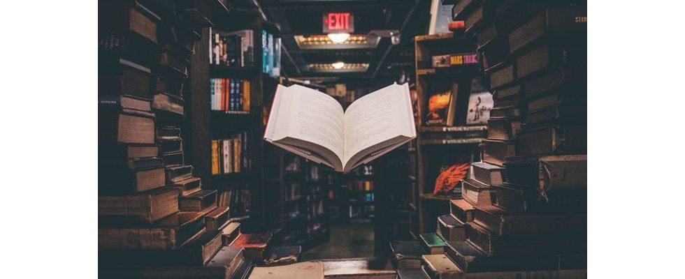 Größerer Wortschatz, mehr Empathie: Gute Bücher beeinflussen unser Leben positiv