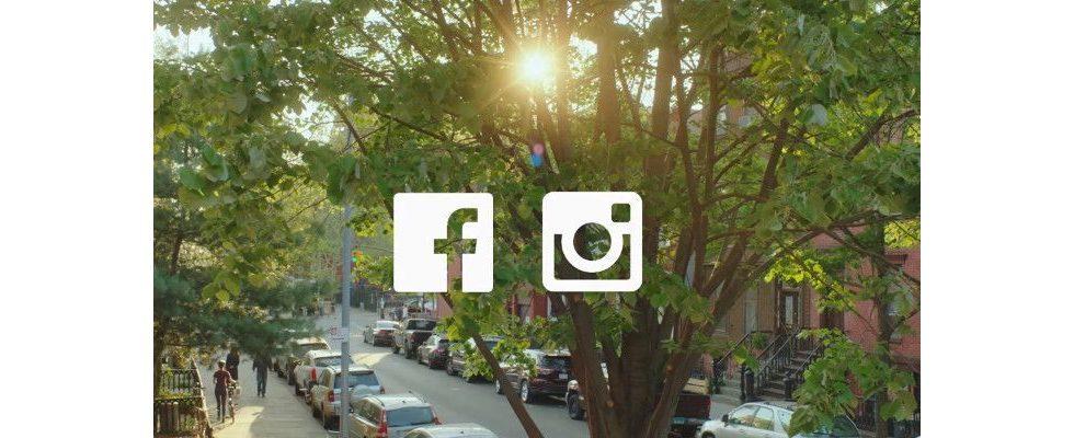 Social Trends-Bericht 2019: Engagement bei Instagram am stärksten und Videowachstum hält an