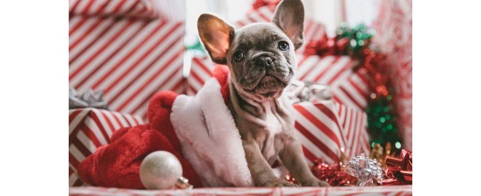5 Wege, um die Weihnachtszeit entspannt zu überstehen