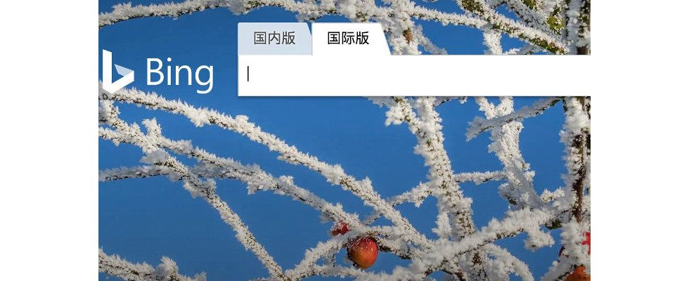 Bing in China blockiert