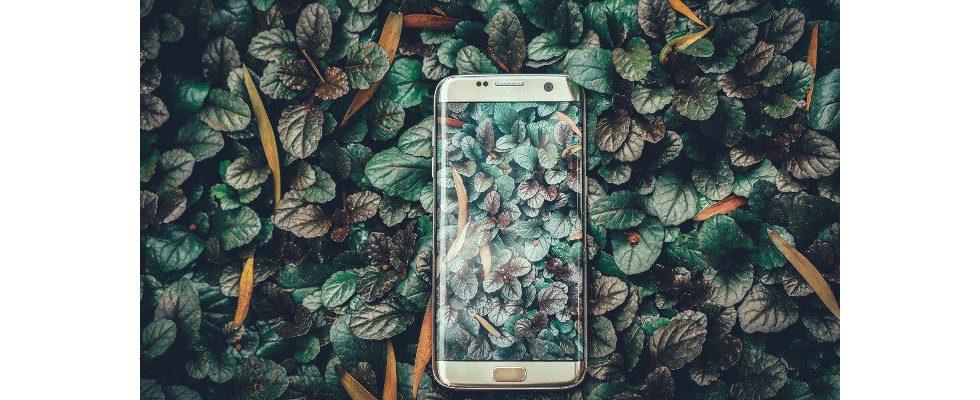 Extremes Wachstum im Mobile Marketing: Nutzungszeit und Ausgaben steigen rasant