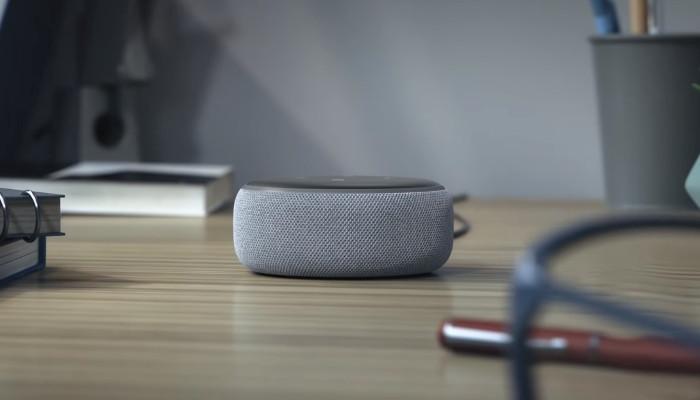 Amazon Echo & Google Home - cover