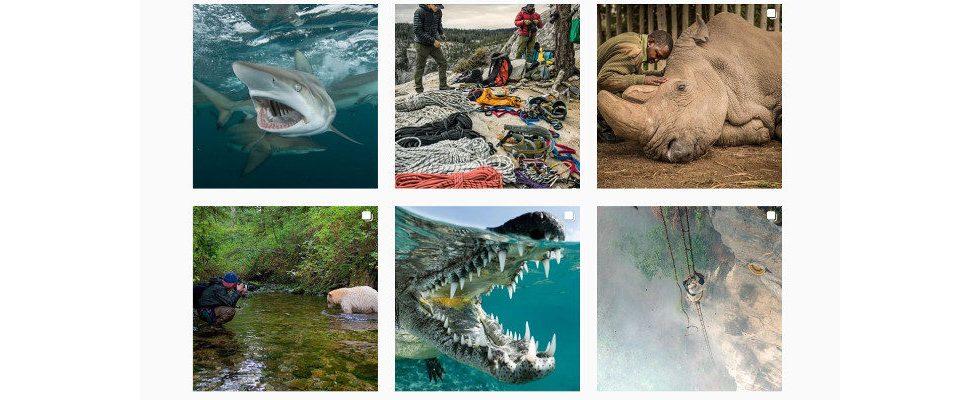 National Geographic knackt als erste Marke die 100 Millionen Follower auf Instagram
