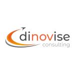 dinovise consulting