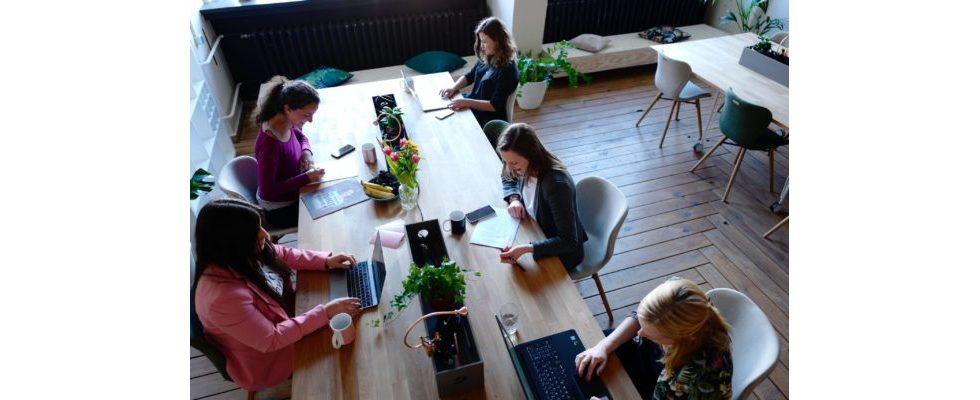 Studie: Immer mehr Frauen erobern von Männern dominierte Berufsfelder