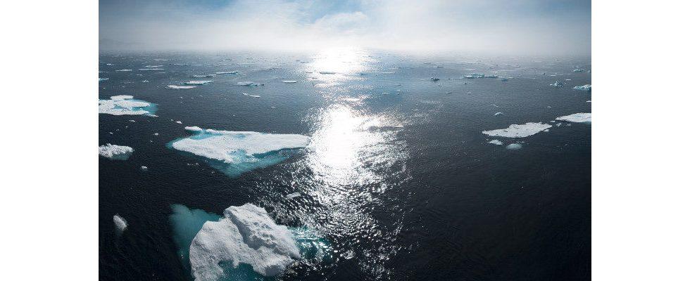 Die Zukunft unserer Arbeit: Klimafreundlich!