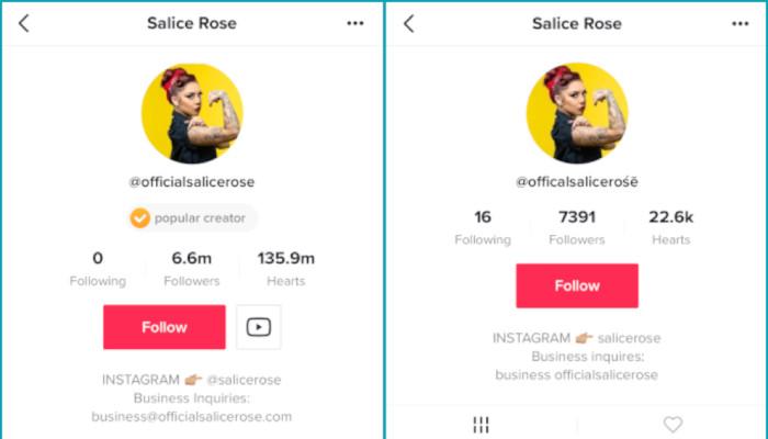 TikTok von Scam überflutet: Fake-Accounts und sexuelle Inhalte vermehren sich rapide   OnlineMarketing.de
