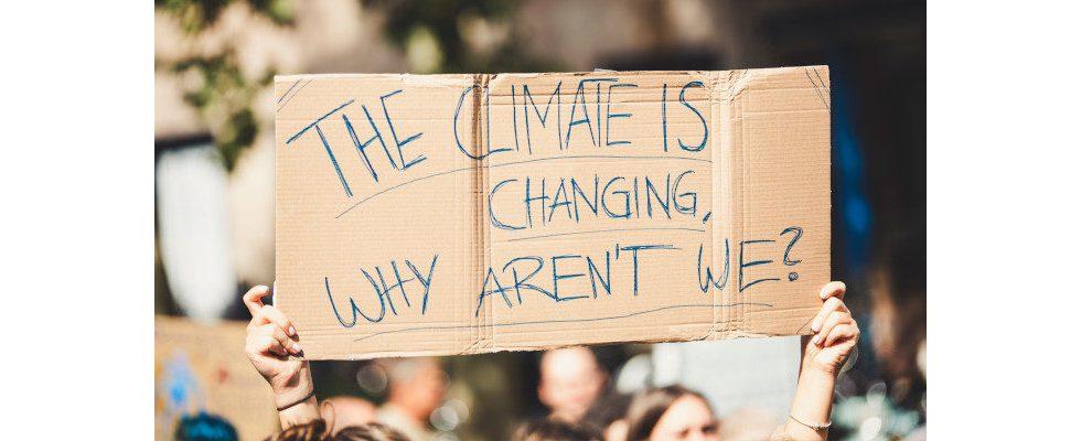 Amazon: Mitarbeitern droht Kündigung wegen Klimaschutz-Statement