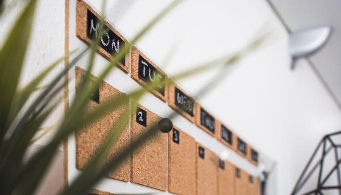 Kalender aus Kork hinter Pflanze